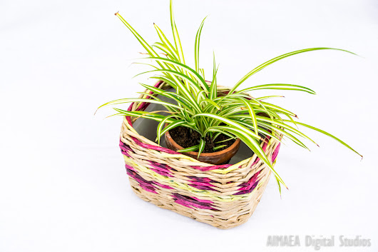 Handmade plant pot brown & purple