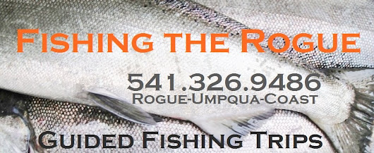 Fishing The Rogue | Upper Rogue River Fishing - Good reports for both Steelhead and Salmon #Steelhead #SalmonFishing #FlyFishing #FishingReport #Fishing - Fishing Directory and Fishing Website - iClickFishing.com