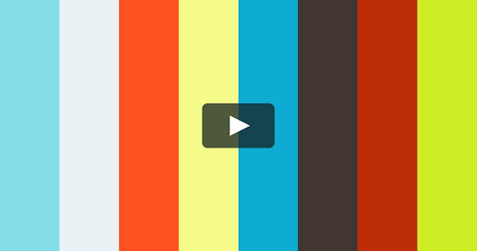 Japan Cherry Blossoms - Drone Lapse Times