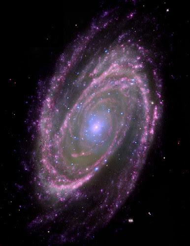 Black Holes Have Simple Feeding Habits (NASA, Chandra, 6/18/08)