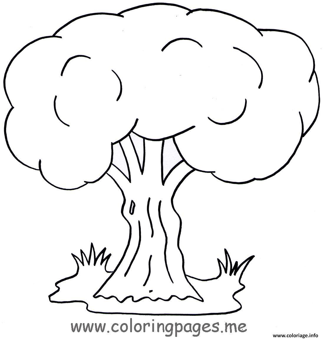 Coloriage Arbre 125 Dessin  Imprimer