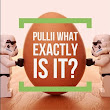 Pullii Review Series Part I to 4 - YouTube