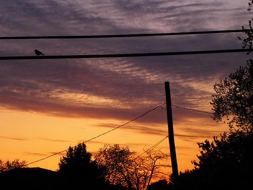 4.28.2010 Bridgview sunset (10)