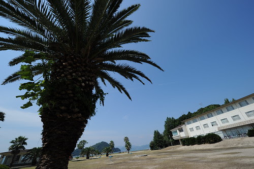Ohkunoshima Island