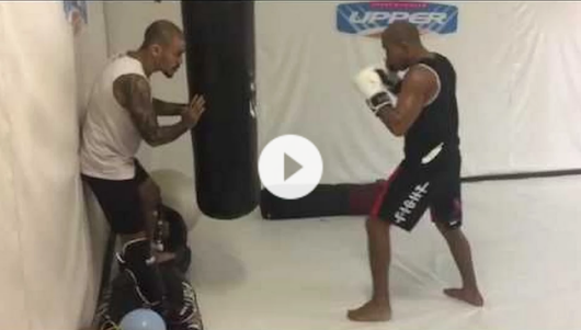 Jose Aldo Drilling his Legendary Leg Kicks