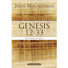 Genesis 12 To 33: The Father of Israel [Book]