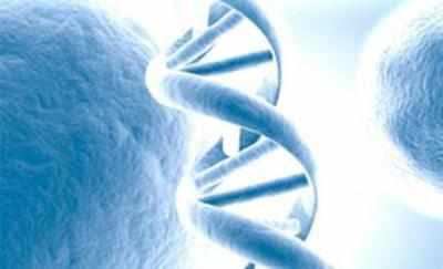 IVF EMBRYOS - Team develops tech to predict DNA defects - Times of India