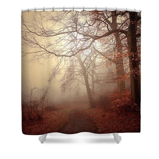 Crooked Path Shower Curtain
