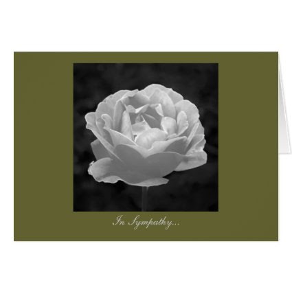 Rose In Black And White - In Sympathy Greeting Card