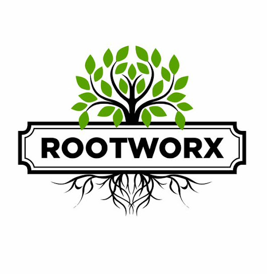 An Insider Look at the Rootworx Growhouse