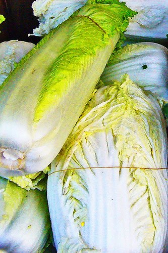Nappa Cabbage in Chinatown