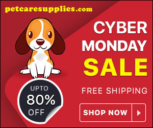 Free Shipping + Flat 7% Off on this Cyber Monday Sale