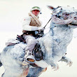 Science Proves Luke Skywalker Should Have Died In The Tauntaun's Belly