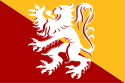 Municipal flag