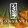 Peasant farmers defeat monsanto's puppet Santos in Colombia