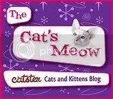 visit Skeezy's noo blog at Catster!