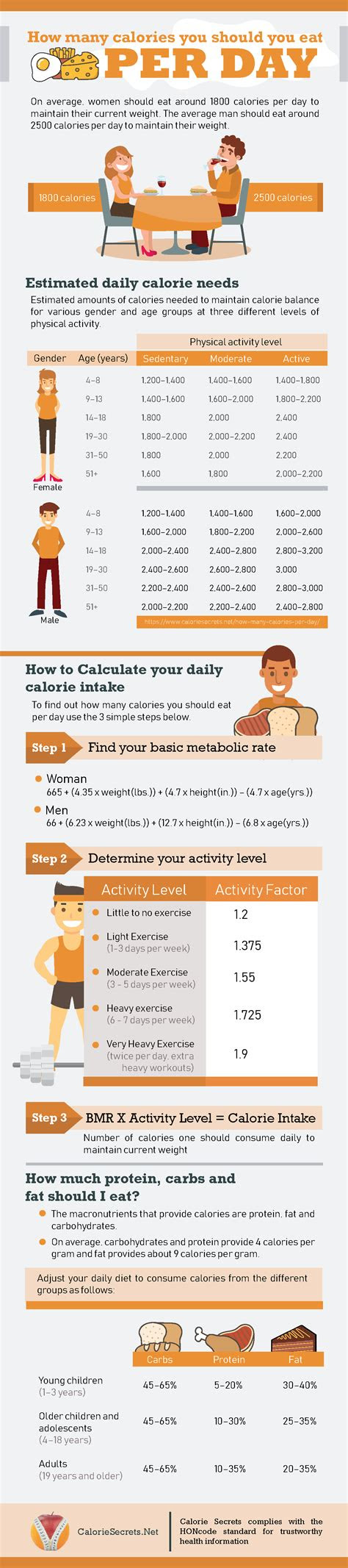 calories   eat  day  lose weight