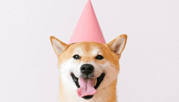 Dogecoin (DOGE) nu te gebruiken bij Coinbase Commerce aangesloten winkels » Crypto Insiders
