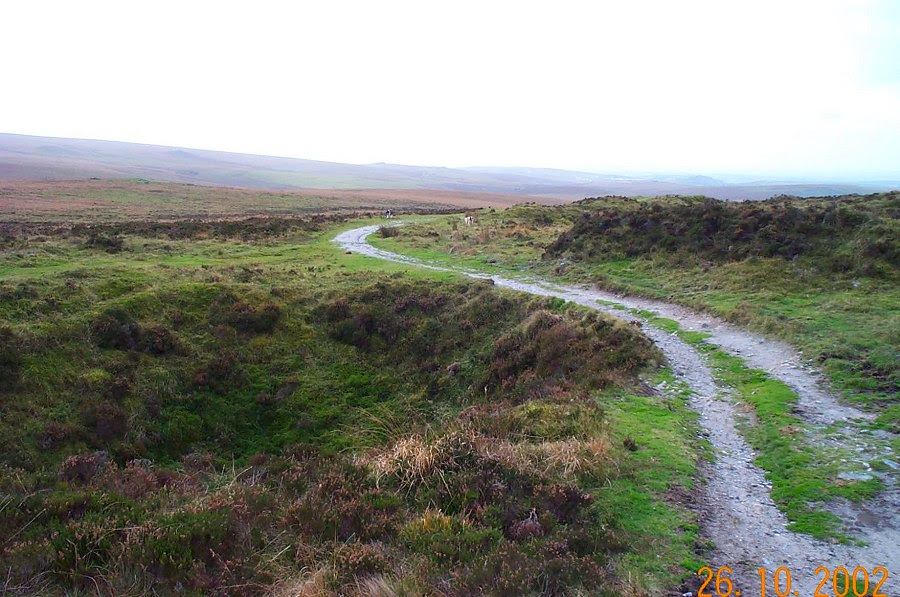 http://www.richkni.co.uk/dartmoor/pix/drizzle/drizzle3.jpg