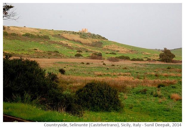 Countryside of Selinunte, Castelvetrano, Sicily, Italy - images by Sunil Deepak, 2014