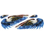 """6"""" x 18"""" Decal, Feathered Eagles"""