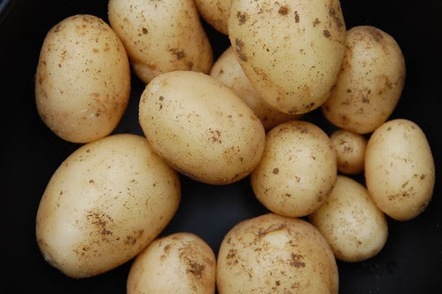swift new potatoes