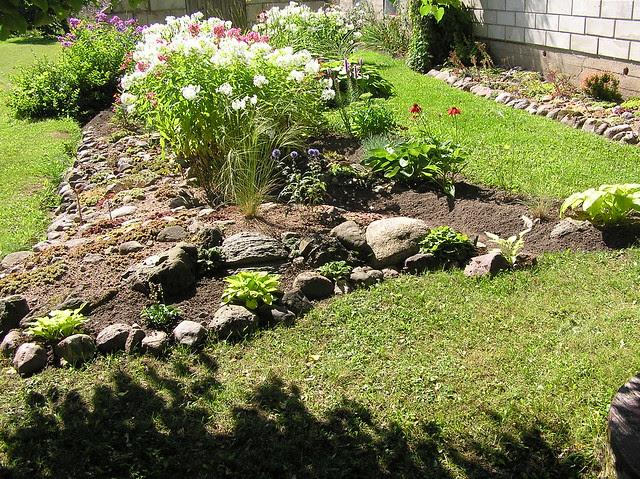 Perennials bed