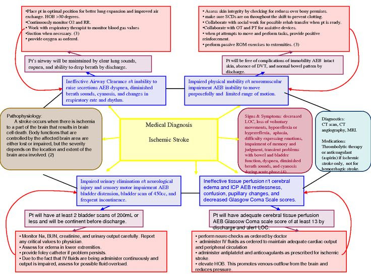 Diagnosis concept maps concept map plu pacific lutheran nursing diagnosis concept maps concept map plu pacific lutheran pronofoot35fo Image collections