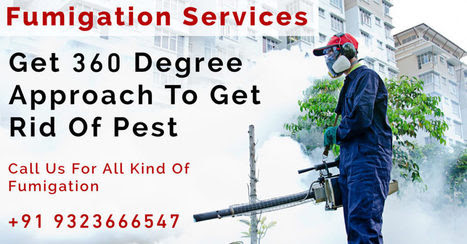 All Types of Fumigation Services in India