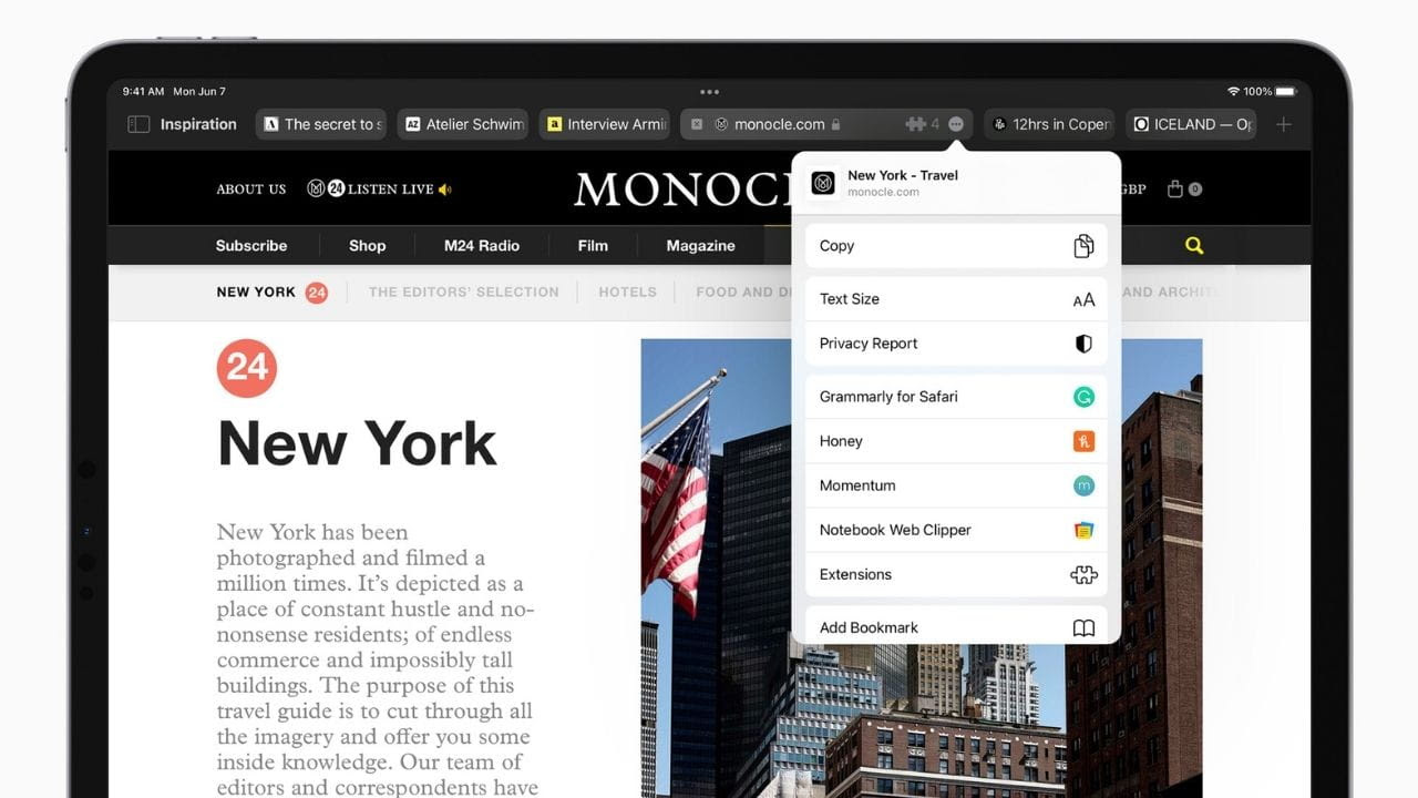 Web extensions are coming to iPhone and iPad. Image: Apple