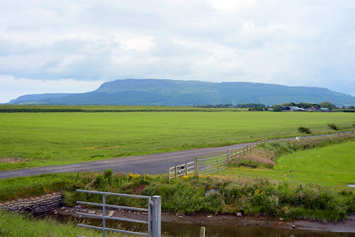 Binevenagh from a Distance