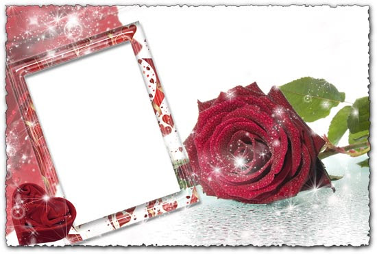 High resolution photo frame with roses
