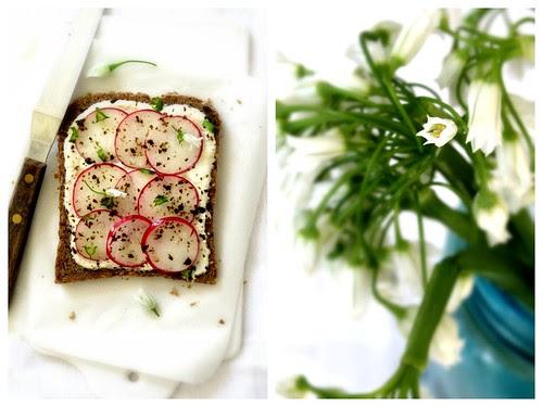 RADISH, PINE NUT PUREE, & NORI-SALT OPEN FACE SANDWICH; GARLIC FLOWERS