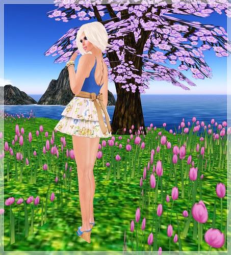 Today's Gaze - Springtime, back