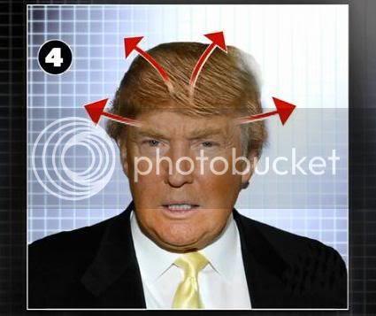 donald trump hair piece. donald trump hair piece.