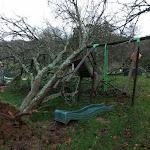 Savigny-sous-Mâlain | Une tempête sans précédent qui a laissé des traces à Savigny-sous-Mâlain