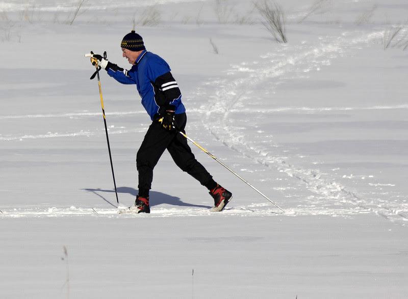Skiing towards Spring