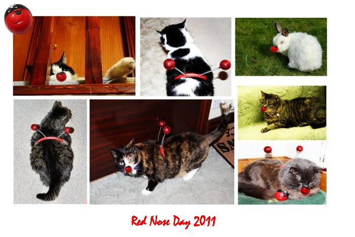 Happy Red Nose Day 2011