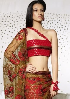 Saree Blouse Designs 2011