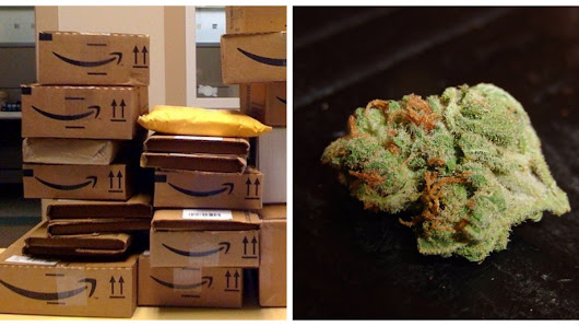 These Amazon Shoppers Ordered Some Plastic Bins and Got 65 Pounds of Weed