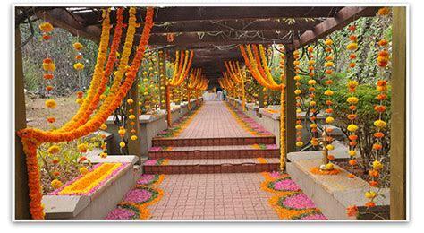 Marigold flower export   APTSO EXPORTS?