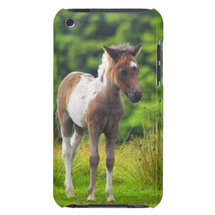 Standing Dartmoor Pony Foal iPod Case-Mate Cases