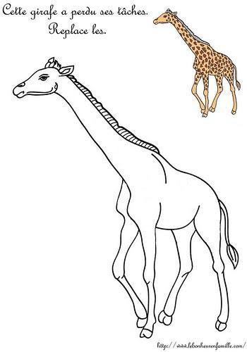 AAAAAAAAAAAAFiche girafe replace ses taches