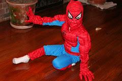 Spidermax 2
