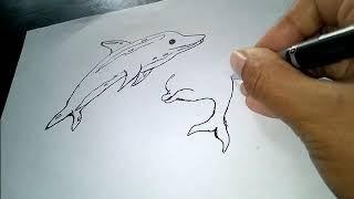 All Clip Of Gambar Sketsa Ikan Lumba Lumba Bhclipcom
