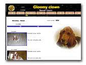 Gloomy Clown Basset Hound