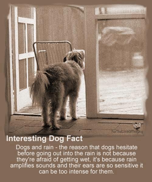 Interesting!