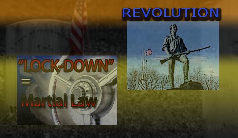 revolutionlock