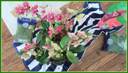 Making a Floral Centerpiece - The Lifestyle Lady