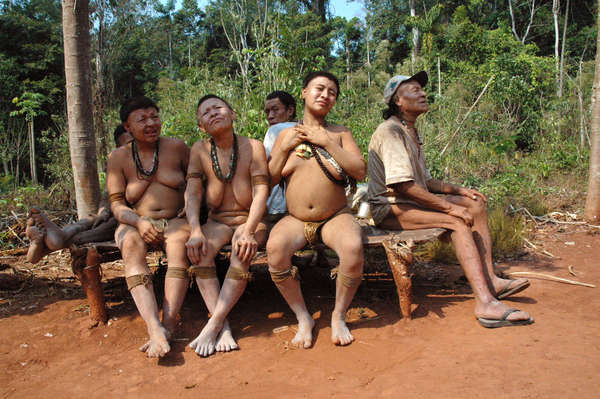 There are now just five surviving Akuntsu. When they die, the tribe will become extinct.